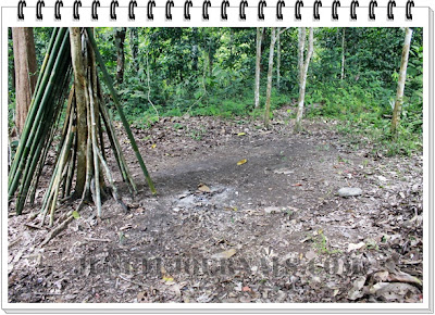 Monsoon Jungle Camping Log ~ Cleaning Campsite