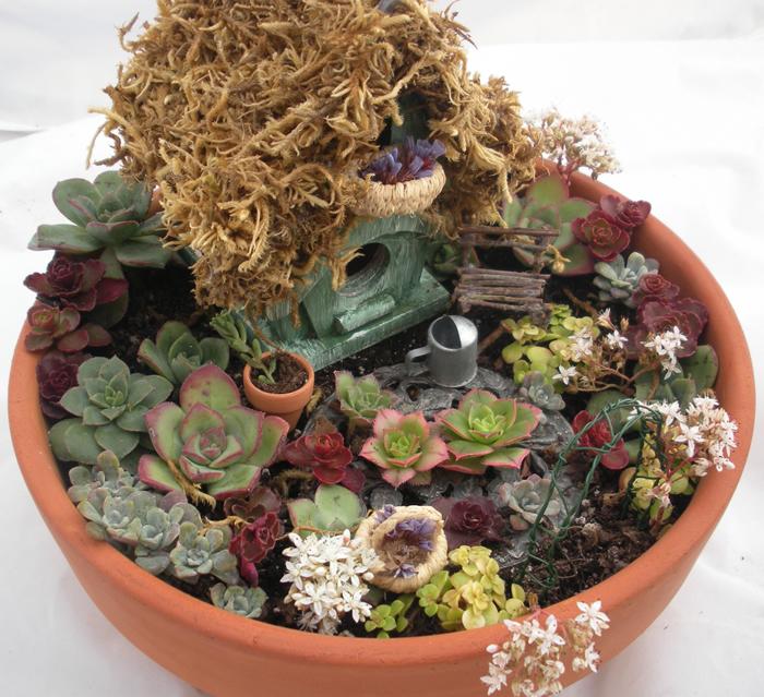 mini jardins em vaso:Em vaso quebrado outra ideia legal, por Natural Art Garden Center.