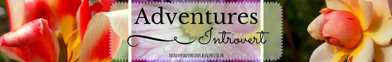 Adventures of an Introvert