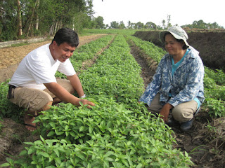 farm thriving on fermented plant juice