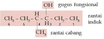 rantai cabang induk gugus fungsional 4-metil-3-heksanol