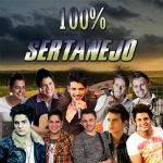 100% Sertanejo 2012