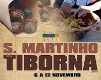 AVIS: S. MARTINHO - TIBORNA NO CONCELHO