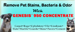 How To Remove Pet Stains AND Odors With Genesis 950