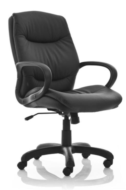 Naples Conference Chair