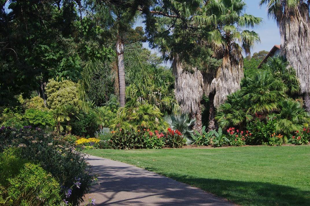 Le jardin des couronnes le jardin olbius riquier for Jardin olbius riquier