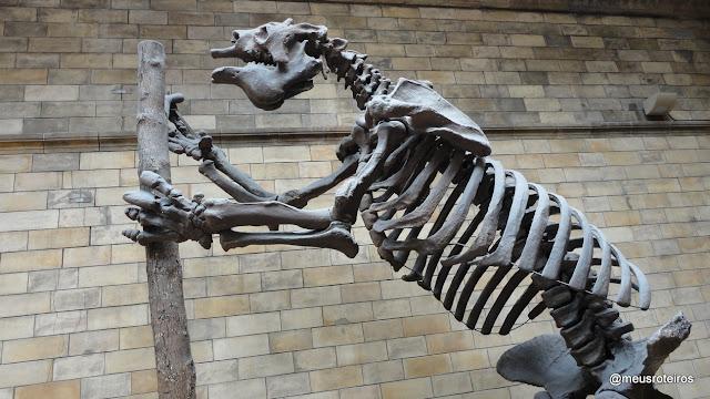 Museu de História Natural (Natural History Museum) - Londres