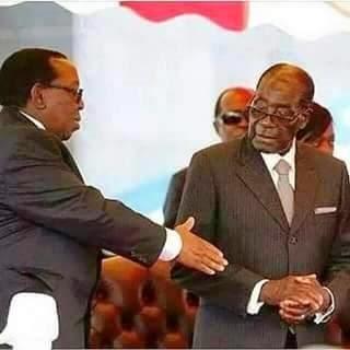 mugabe shake hand zulu king
