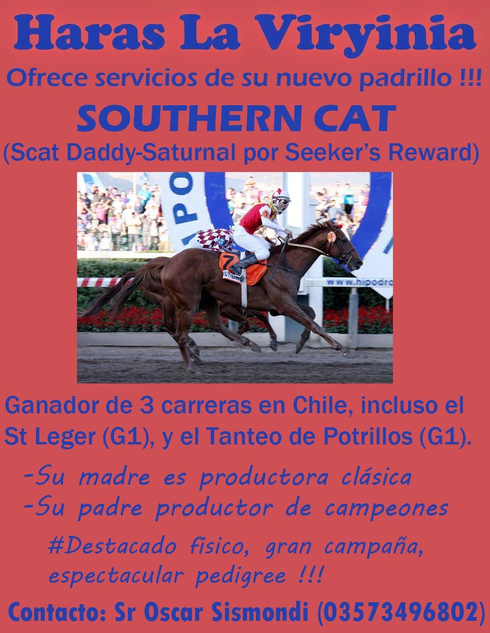 HS LA VIRYINIA SOUTHERN CAT