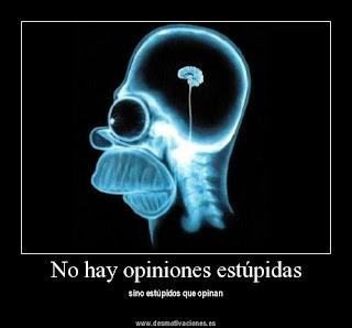 No existen opiniones estúpidas, solo estúpidos que opinan.