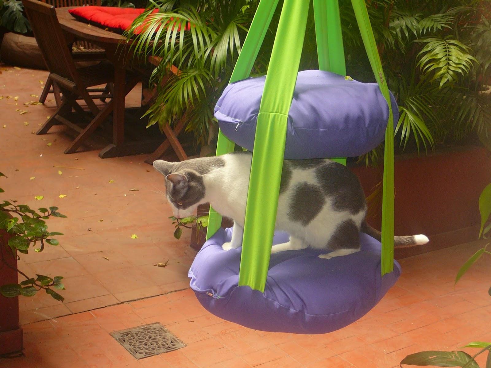 Hamacats hamacat for Macetas para balcon