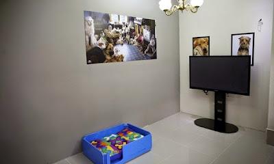 """Mỗi một phòng đều có một chiếc ti vi  để những """"khách hàng"""" không cảm thấy nhàm chán."""