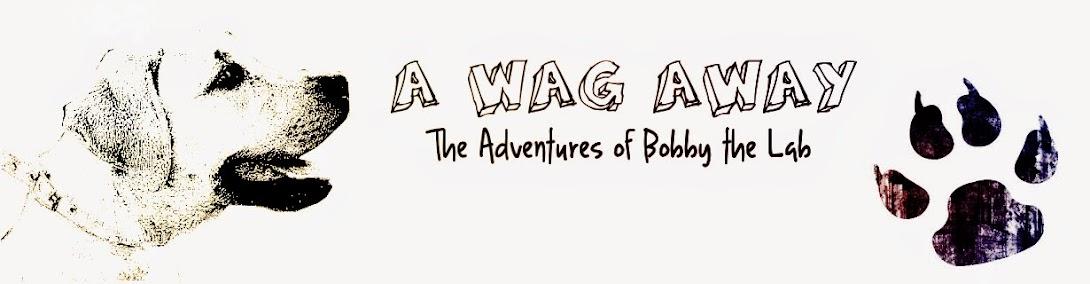 A Wag Away