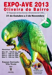 EXPO-AVE OLIVEIRA DO BAIRRO 2013