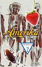 Amerika (2011)