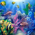 Beautiful Collection of Colourful Fish, Aquarium Fish Wallpaper
