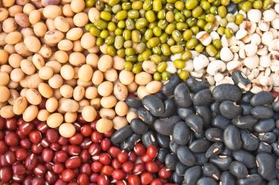 ¿Proteínas animales o vegetales?