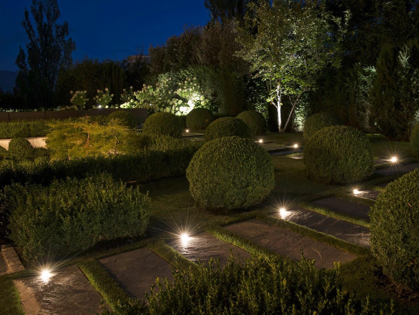 Amedeo liberatoscioli consigli utili illuminazione da - Alberi bassi da giardino ...
