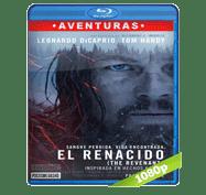 El Renacido (2015) Full HD BRRip 1080p Audio Dual Latino/Ingles 5.1