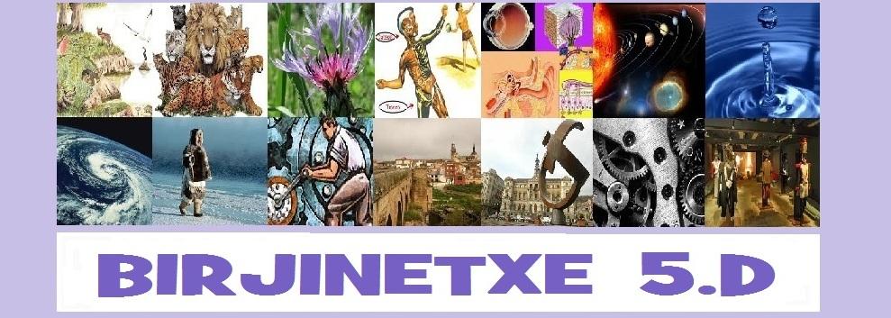 BIRJINETXE 5.D