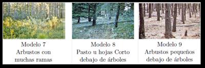 Modelos 7,8 y 9 según Rothemel.