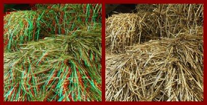 Slike za poredjenje  3D  i  2D