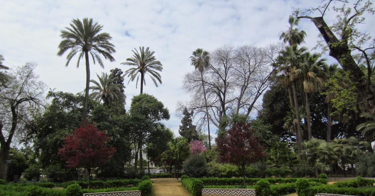 plataforma ciudadana parques y jardines sevilla pr xima
