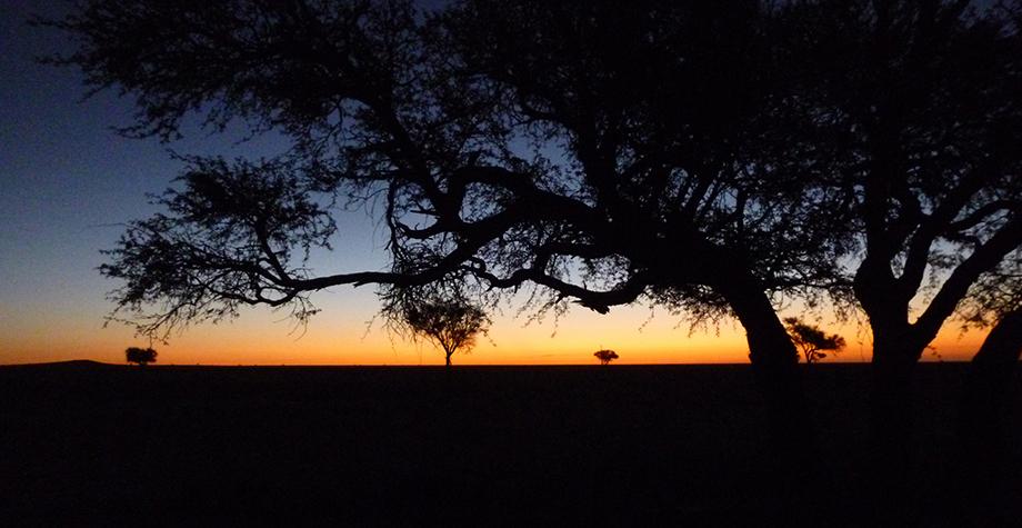 Ynas Reise Blog | Campen in Namibia | mitten im Nichts