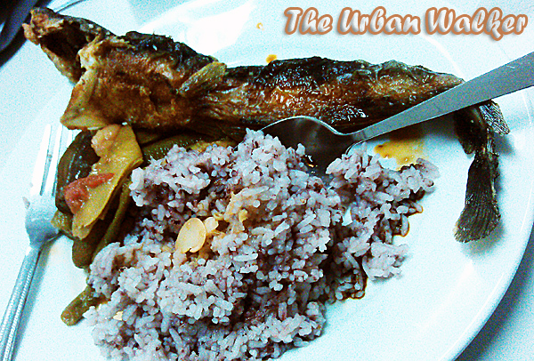 rice-meal-with-fried-catfish