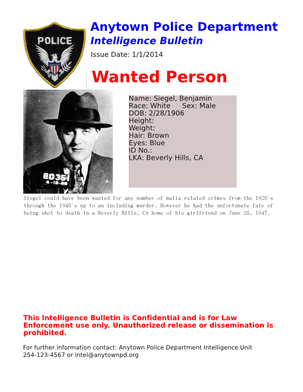 The Crime Analysts Blog What Makes A Good Bolo
