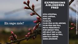 Expressions i frases d'Aielo
