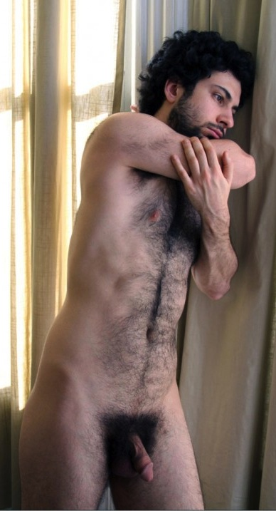 hairy men happy trails