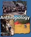 Understanding Health Anthropology According to the Experts