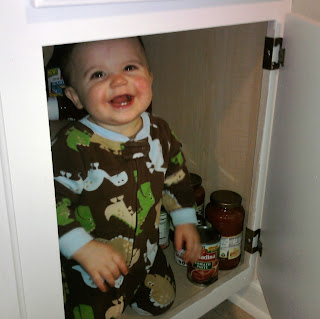 Hanging out in the kitchen cabinet.