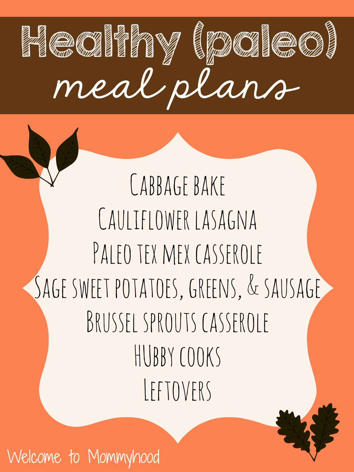 Healthy Meal Plans #paleo {Welcome to Mommyhood}