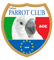 Parrots sings Italian national anthem