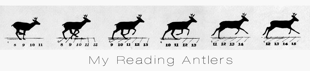 My Reading Antlers