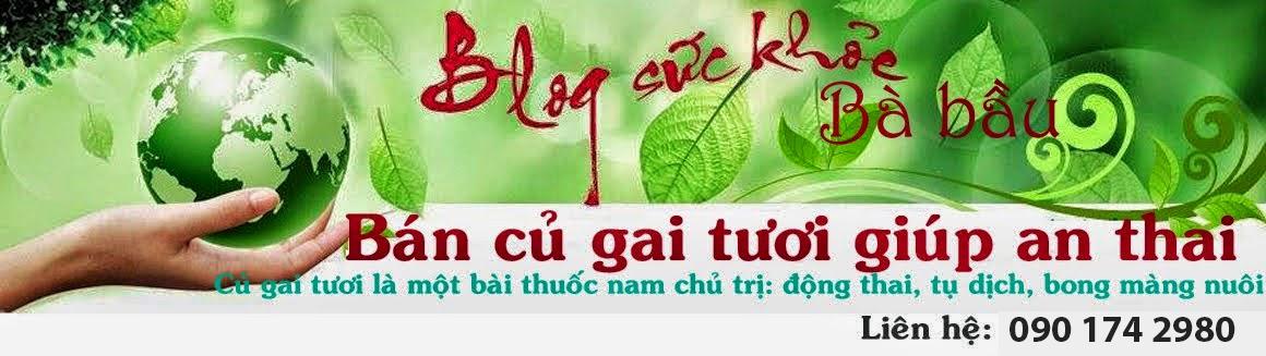 Bán Củ Gai Tươi Giúp An Thai. Củ gai tươi chữa động thai, dọa sảy thai hữu hiệu. LH: 090.174.2980