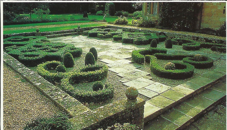 Ilclanmariapia il bosso - Giardini bellissimi ...