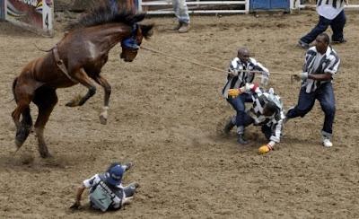Mustang en el rodeo intentando huir de cuatro hombres que tirán de él con una soga