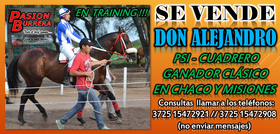 SE VENDE - DON ALEJANDRO