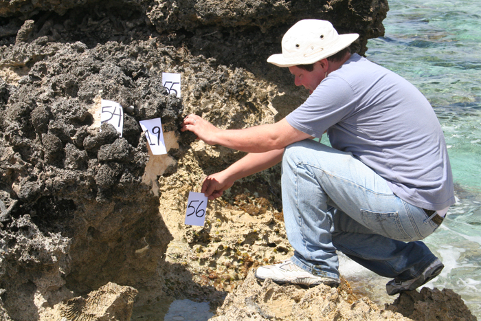 dating corals Beta analytic, an iso/iec 17025-accredited carbon-14 lab in miami, florida, has dated thousands of shells, corals and other carbonates since 1979.