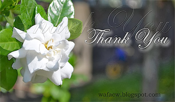 thank you by wafacw