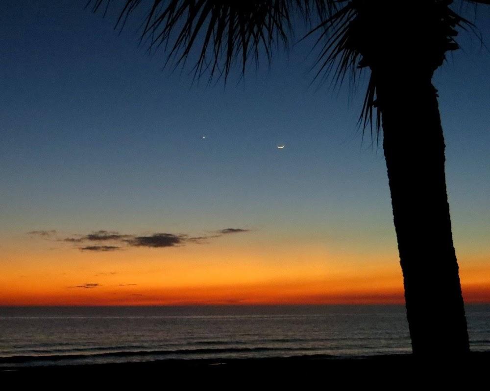 Tấm hình thơ mộng này tới từ bờ biển Florida, Hoa Kỳ bởi Cathy Emmett-Palmer.