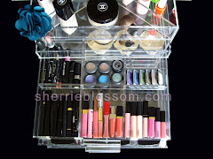 Clear ICEbOX Makeup Organizer