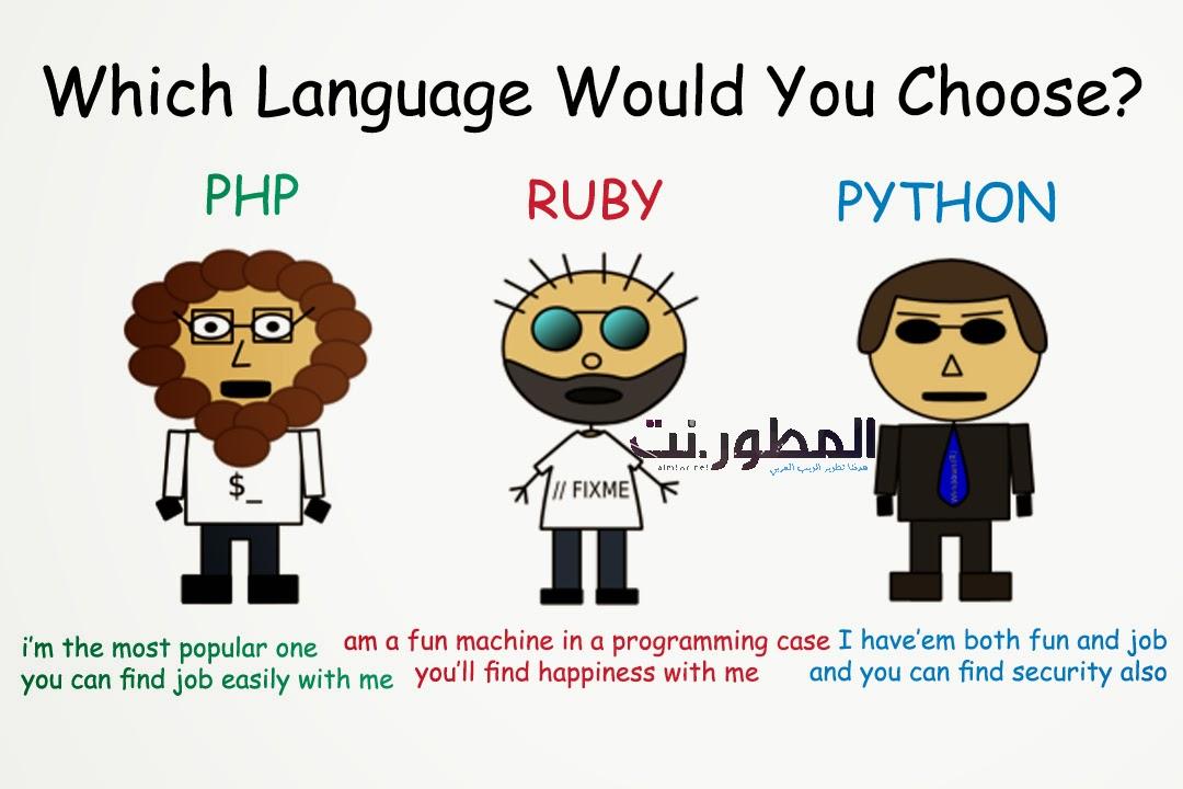 [الإنفوجرافيك] أضخم لغات البرمجة المتخصصة في تصميم الويب