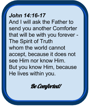 John 14:16-17 And I will ask the Father to send you another Comforter that will be with you forever - The Spirit of Truth  whom the world cannot accept, because it does not see Him nor know Him.  But you know Him, because He lives within you.  Be Comforted!