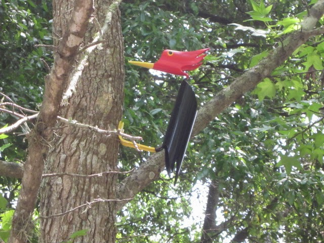 Pvc pipe birds pvc red headed pileated woodpecker woodpecker for How to make pvc pipe birds
