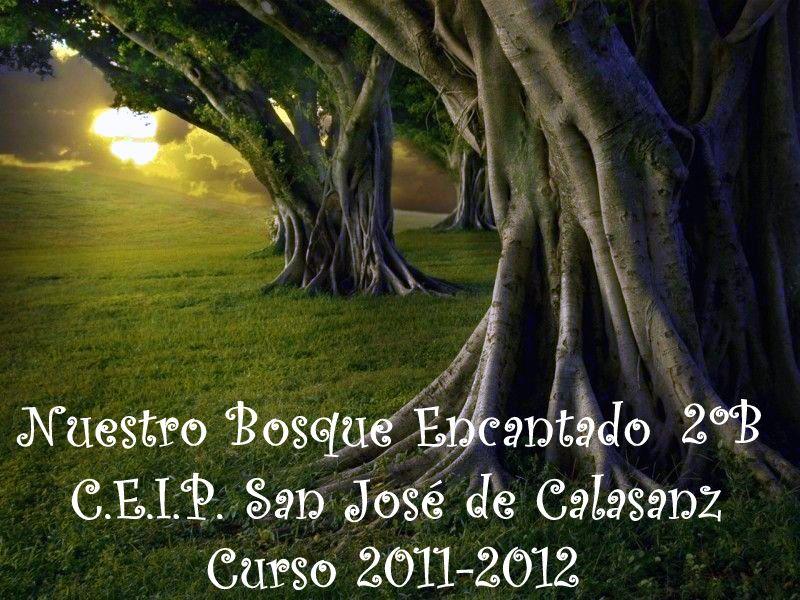 Nuestro Bosque Encantado