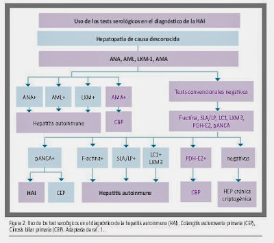 http://www.aegastro.es/sites/default/files/archivos/ayudas-practicas/51_Hepatitis_autoinmune.pdf